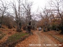 Ruta de las Pallozas y las Médulas - 2012