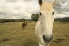 Riofrio-marzo-2012-terranatur07