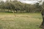 Riofrio-marzo-2012-terranatur29