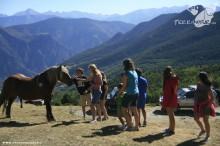 Vacaciones 4x4 - Pirineos - 2012