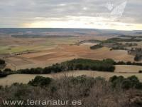 Enoturismo Terranatur, invierno 2011
